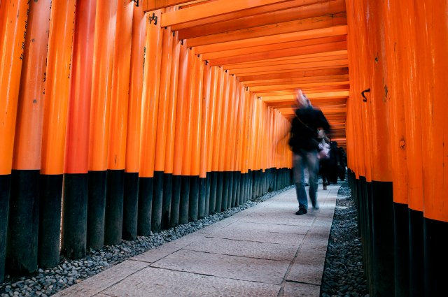 Torii leading to the outer shrine