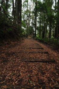 Wooden Railway still can be seen on the track.