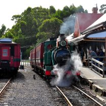 West Coast Wilderness Railway Train
