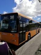 Orange_bus